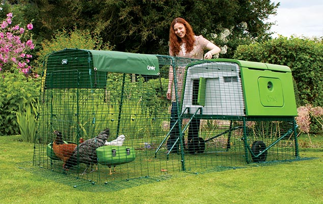 Large Chicken Coop - Eglu Cube