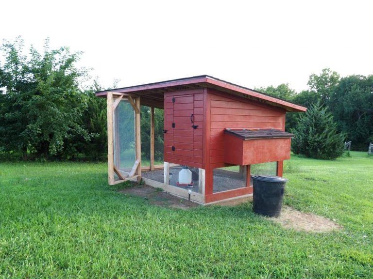chicken coop size