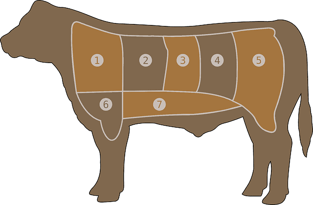 meat chart 29043 640 1